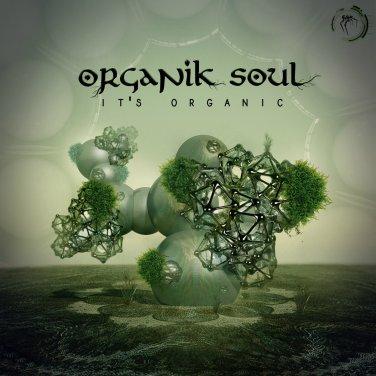 organik sould.jpg